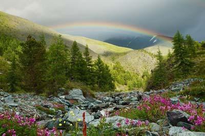 Издавна на Алтай приезжают в поисках здоровья и красоты